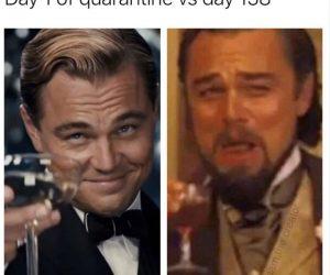 Day 1 Of Quarantine Vs Day 158 – Meme