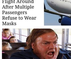 Delta Turns Flight Around After Passengers Refuse To Wear Masks – Meme