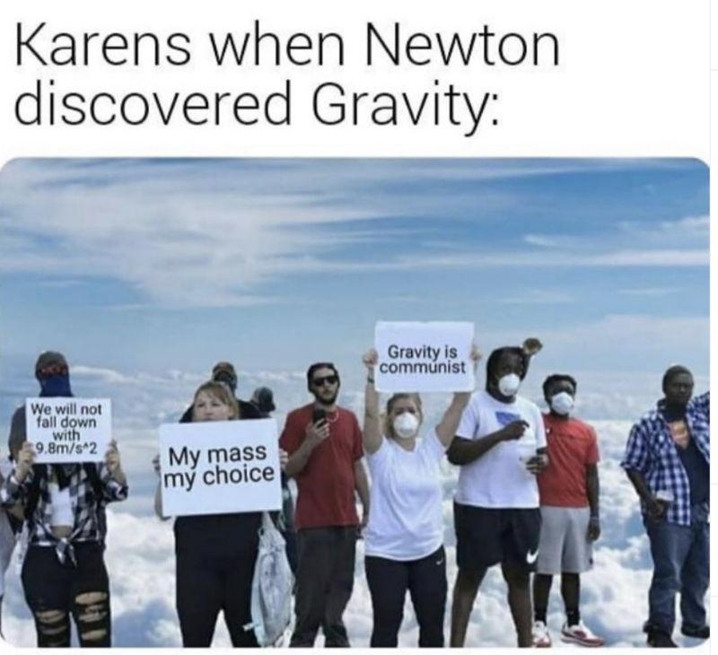 karens when newton discovered gravity meme