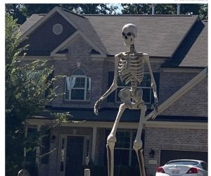 12 Foot Tall Giant Skeleton With Animated LCD Eyes – I am that neighbor who will decorate something like this!