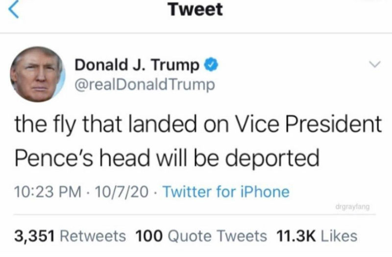 the fly that landed on pences head will be deported meme