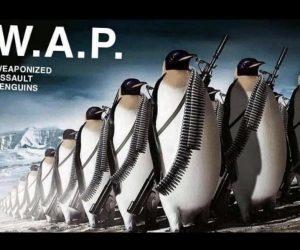 WAP Weaponized Assault Penguins – Meme