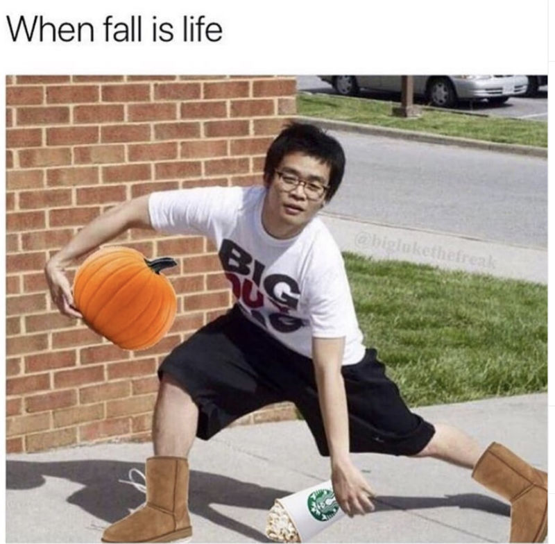 when fall is life meme