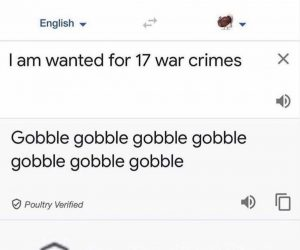 Google Translate Added A Turkey Option – Meme
