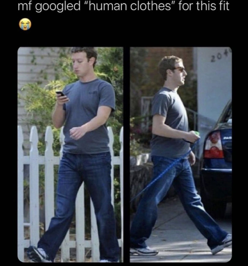 mark zuckerberg wearing human clothes