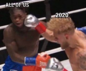Nate Robinson Knockout Meme 2020 All Of Us