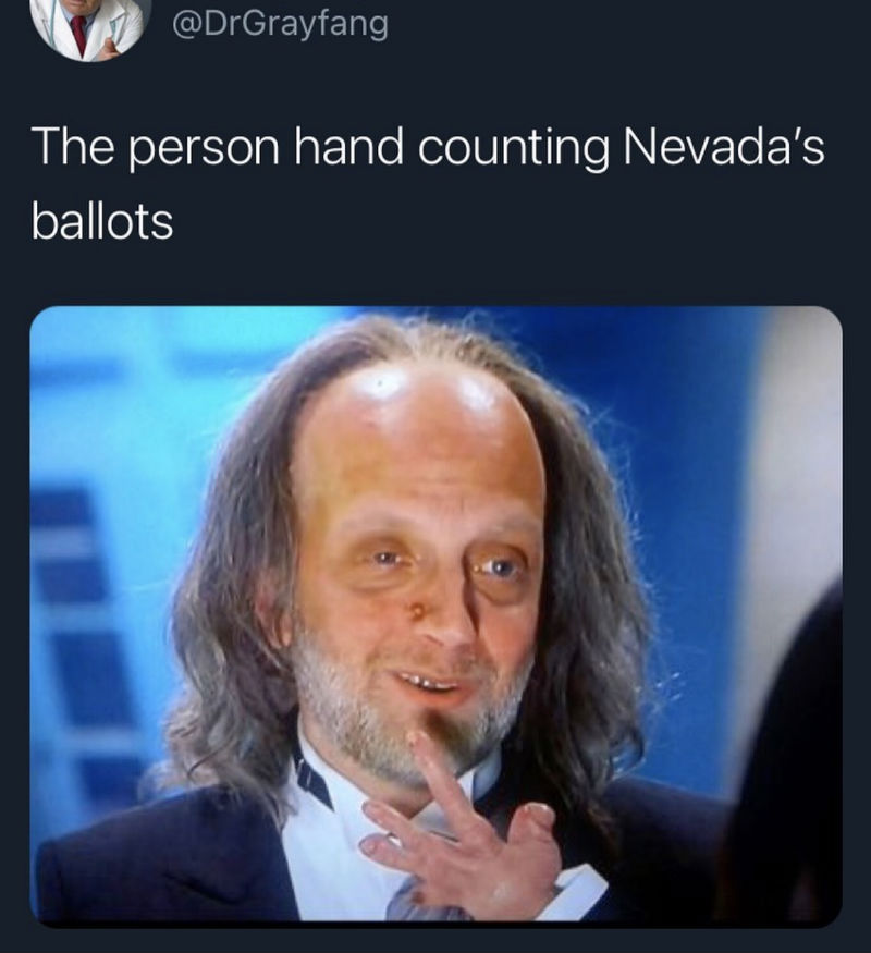 the person hand counting the nevada ballots