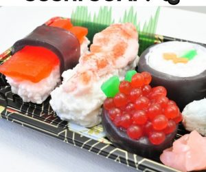 Sushi Soap – These SUSHI soaps make MISO happy!