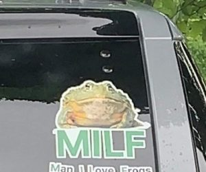 MILF Man I Love Frogs Bumper Sticker – Show your love for frogs with this high-quality funny car sticker!