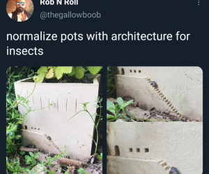 Concrete Building Ornaments – Normalize pots with architecture for insects!
