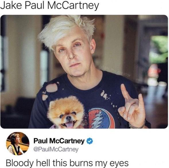 jake paul mccartney